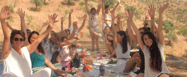 de picnic Ban